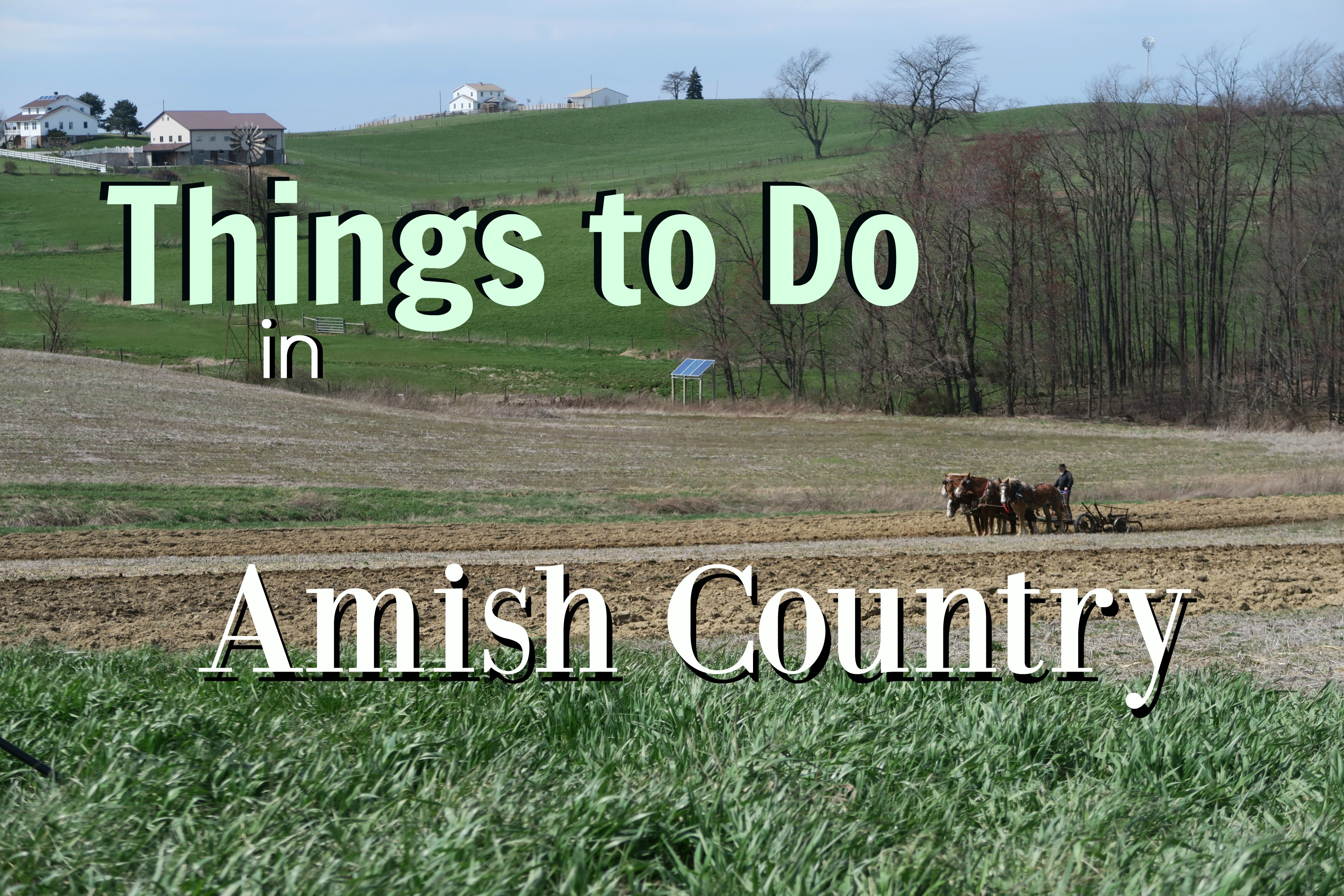 explore amish country 5 things to do near berlin ohio
